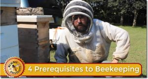 Lesson on becoming a beekeeper