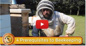 Lesson on becoming a beekeeper image